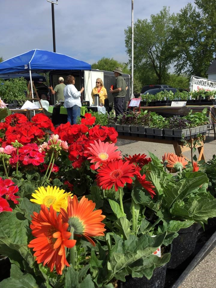 Menominee county farmers market